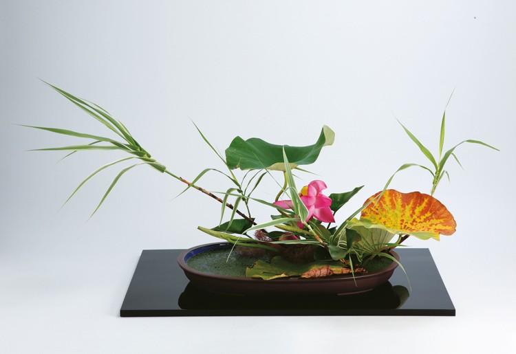 Landscape Moribana Ohara arrangement