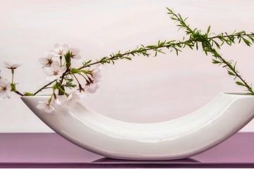 Asymmetrical Ikebana